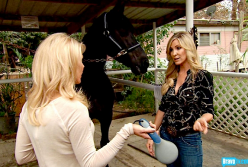 No Gretchen, you cannot take that to Tamra's bachelorette party.  It's just for the horses.